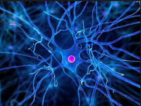 Airnergy+ en Neurología