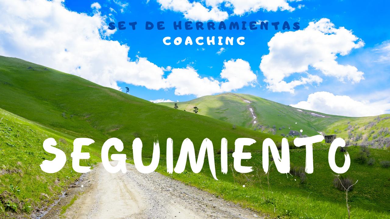 Seguimiento al Coaching